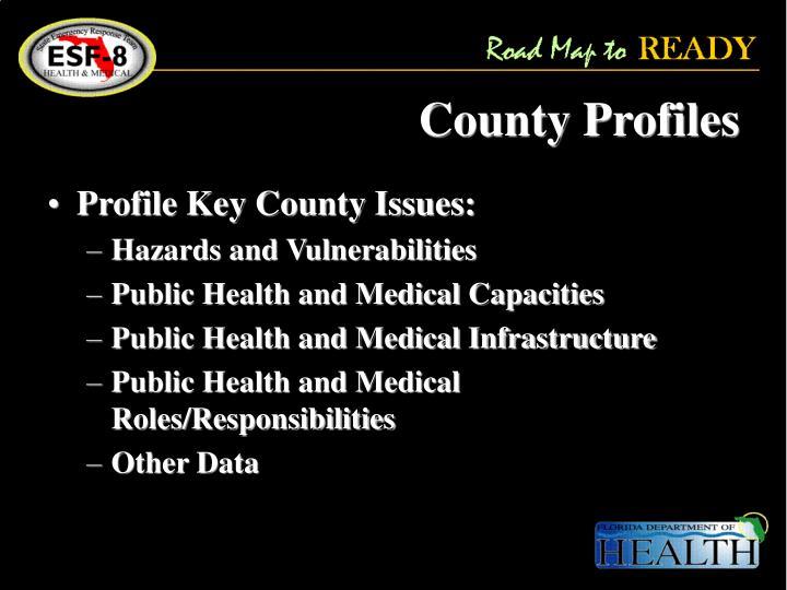 County Profiles
