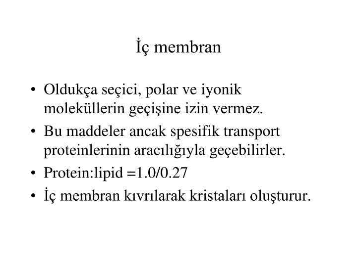 İç membran