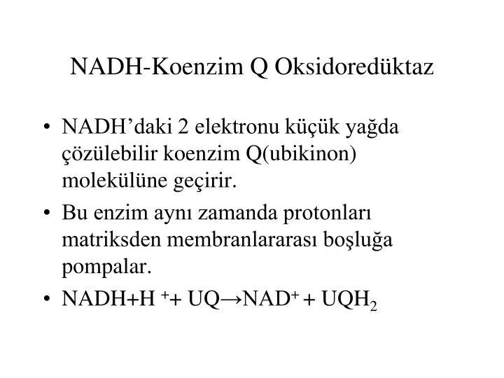 NADH-Koenzim Q Oksidoredüktaz