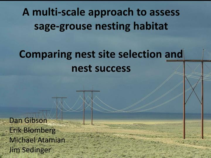 A multi-scale approach to assess sage-grouse nesting habitat