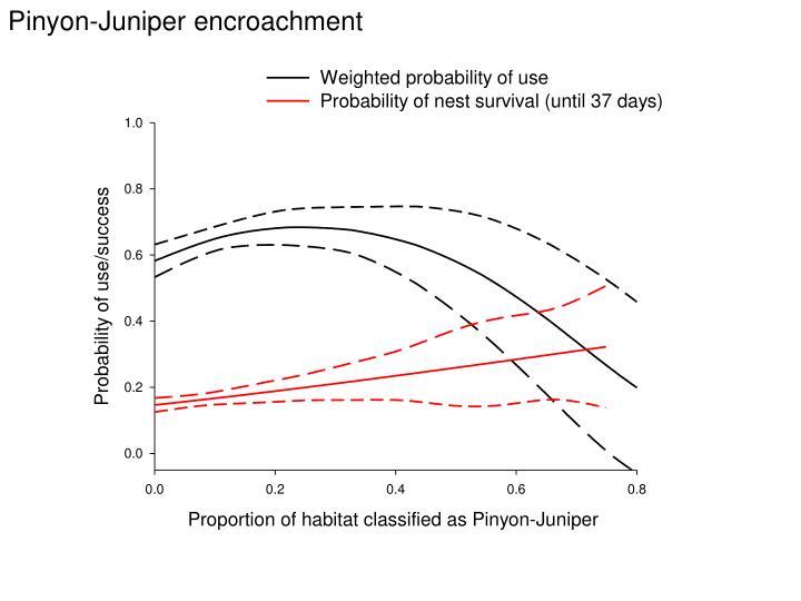 Pinyon-Juniper encroachment