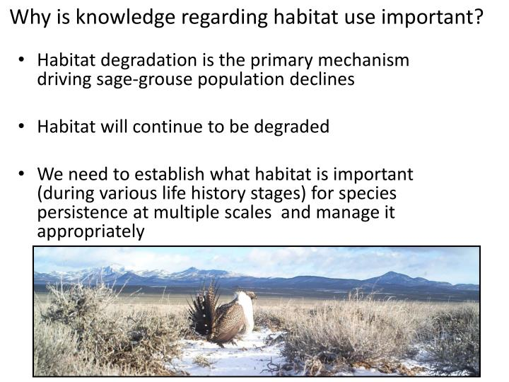 Why is knowledge regarding habitat use important?