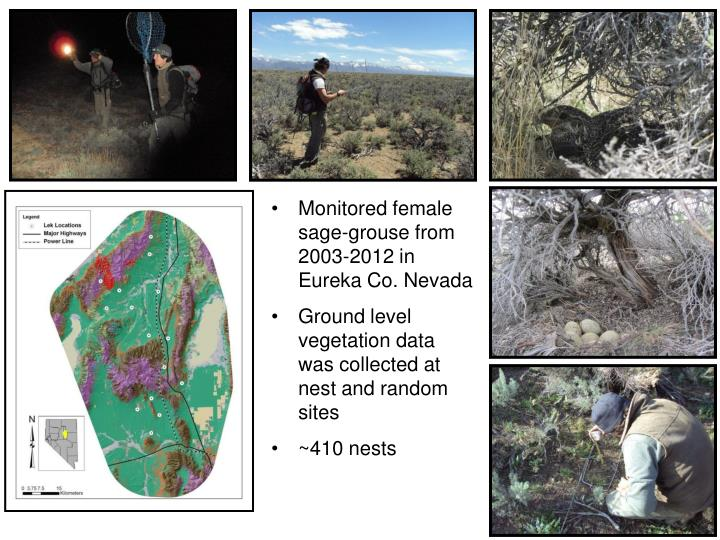 Monitored female sage-grouse from 2003-2012 in Eureka Co. Nevada