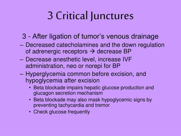 3 Critical Junctures