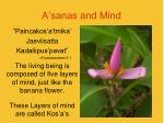 a sanas and mind