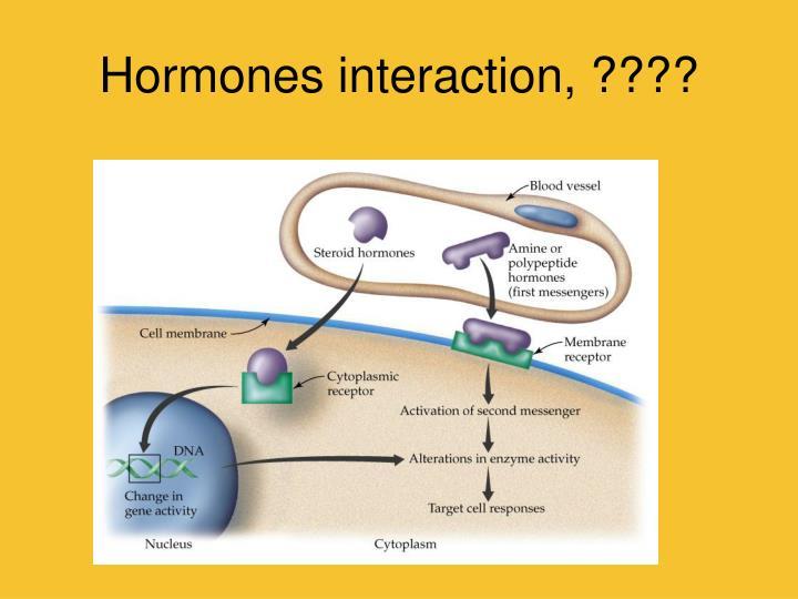 Hormones interaction, ????