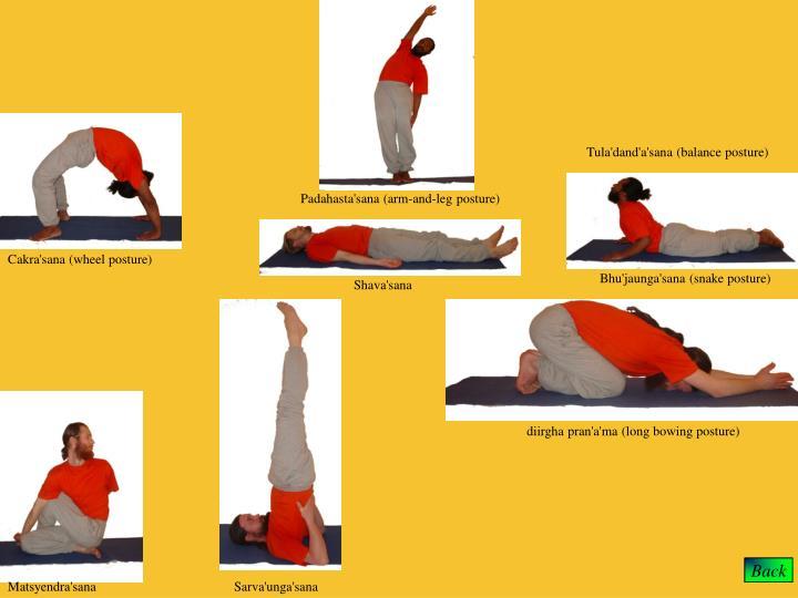 Tula'dand'a'sana (balance posture)