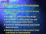a broad view of prevention1