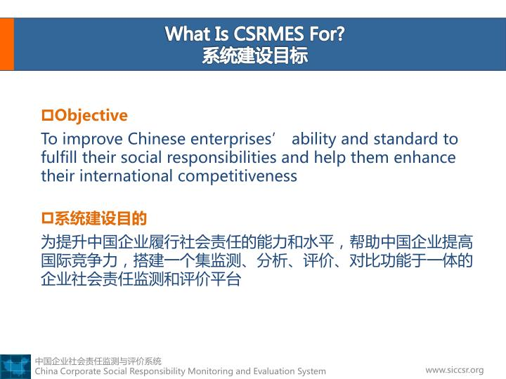 What Is CSRMES For?