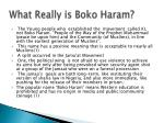 what really is boko haram