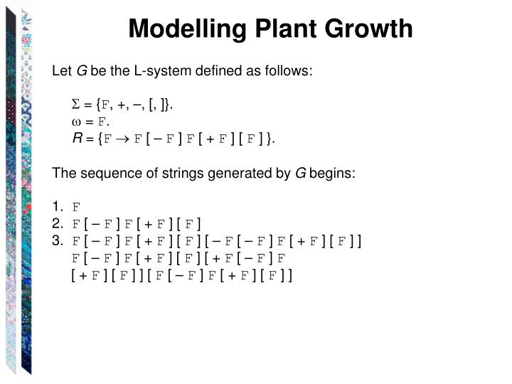 Modelling Plant Growth