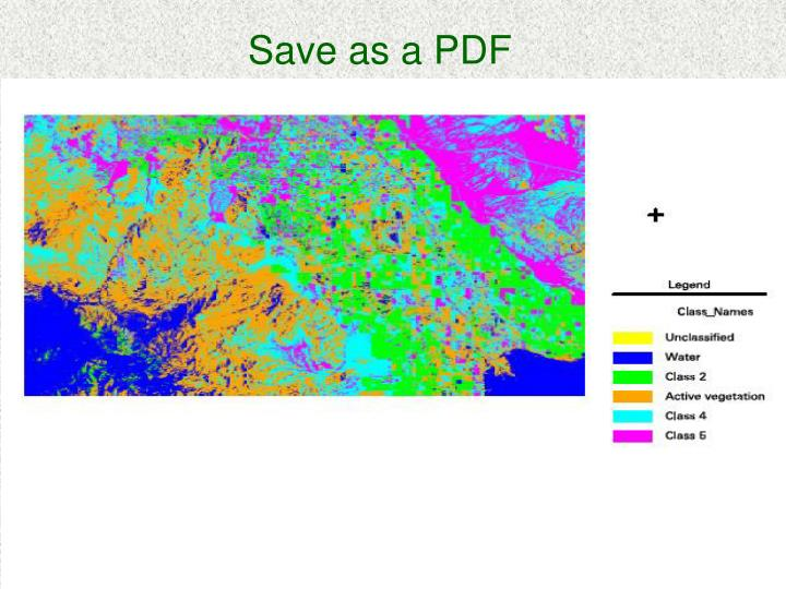 Save as a PDF