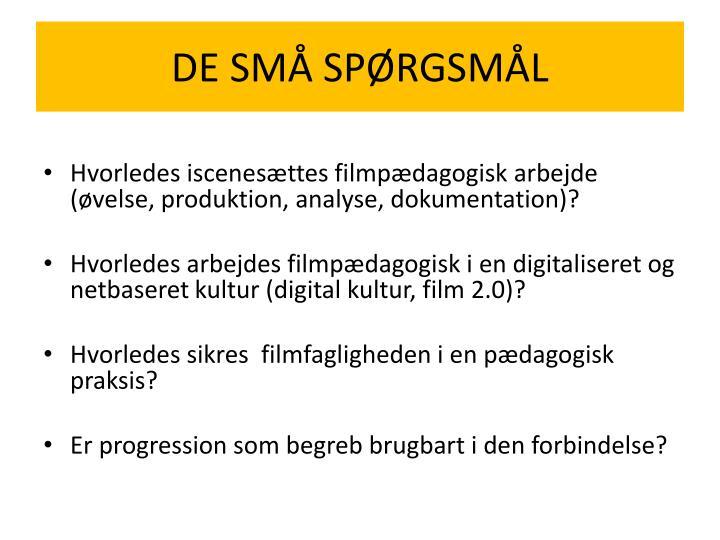 DE SMÅ SPØRGSMÅL