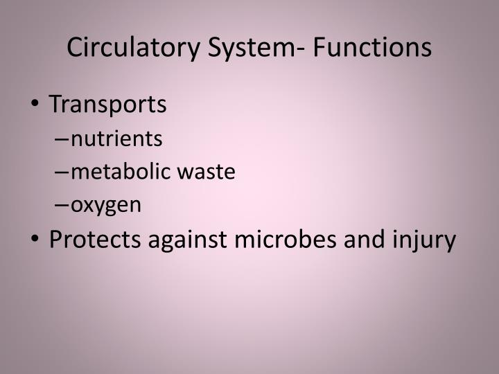 Circulatory System- Functions