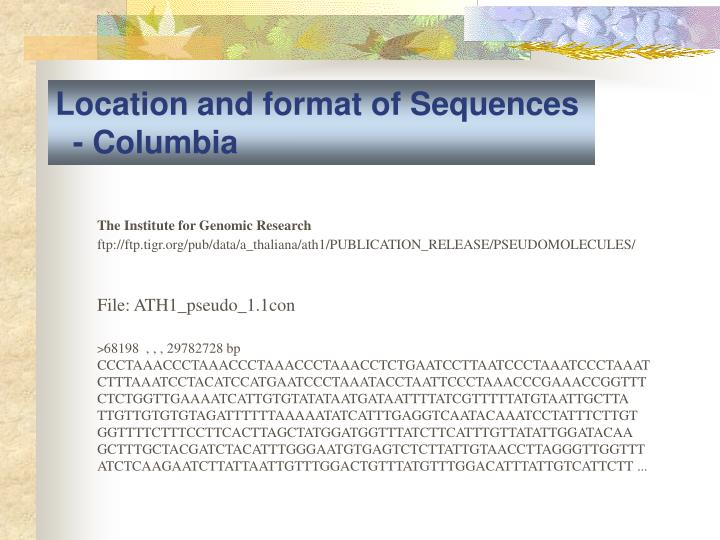 Location and format of Sequences