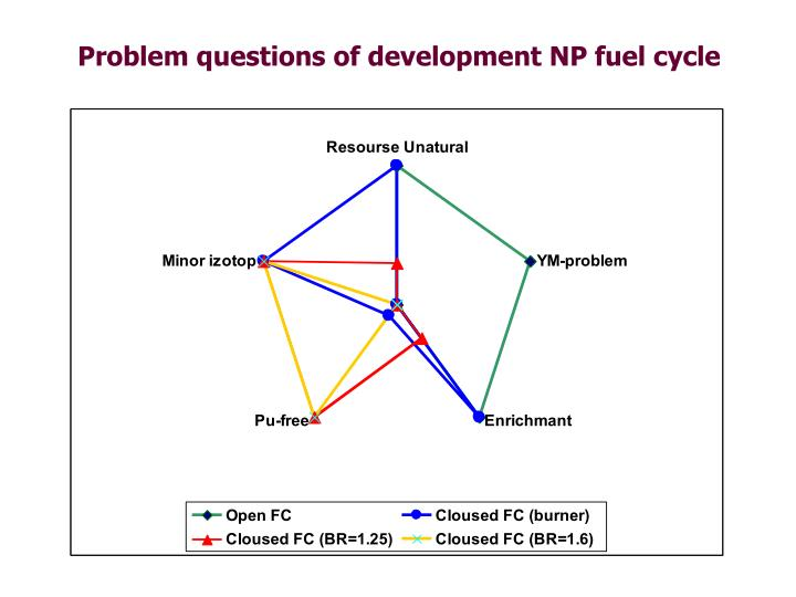Problem questions of development NP fuel cycle