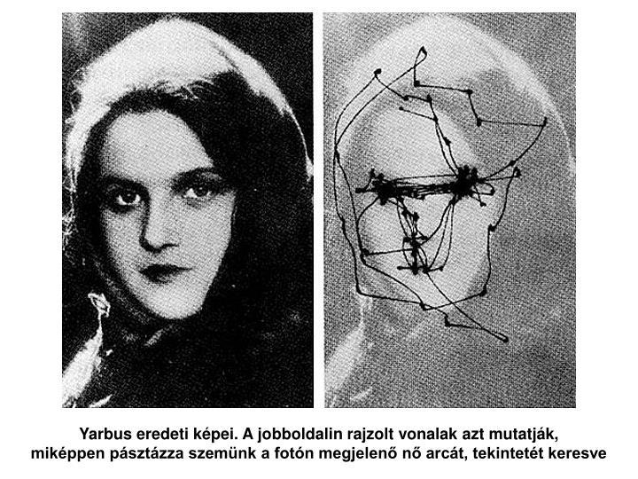 Yarbus eredeti képei. A jobboldalin rajzolt vonalak azt mutatják,