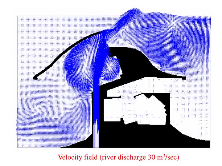 Velocity field (river discharge 30 m