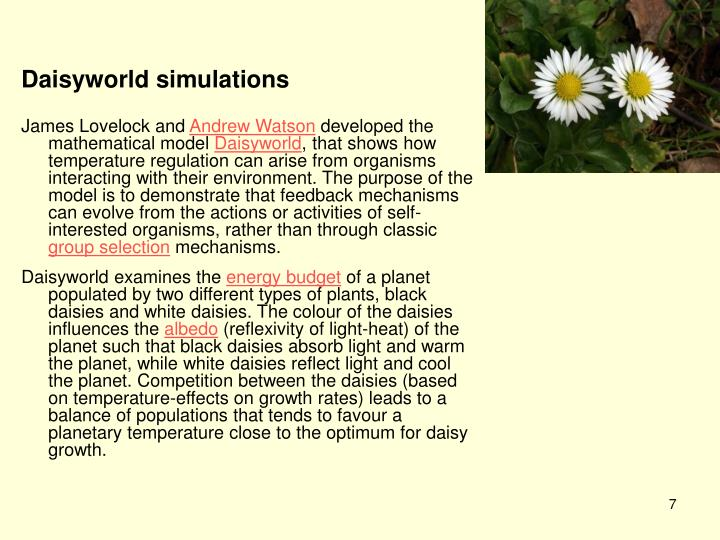 Daisyworld simulations