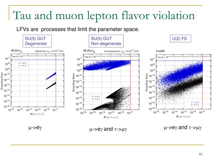 Tau and muon lepton flavor violation