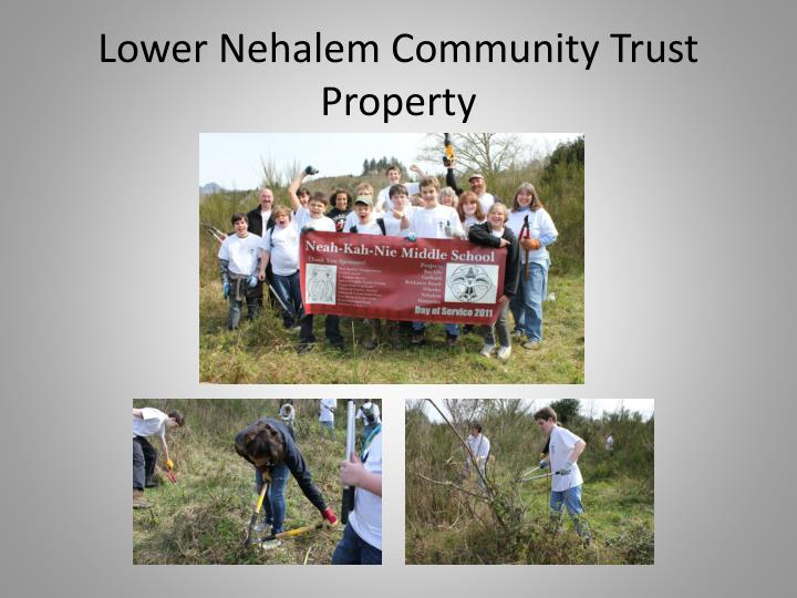 Lower Nehalem Community Trust Property