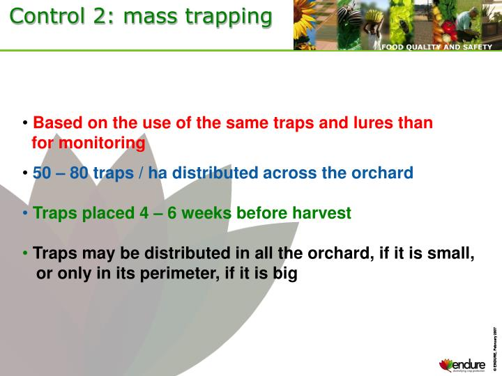 Control 2: mass trapping