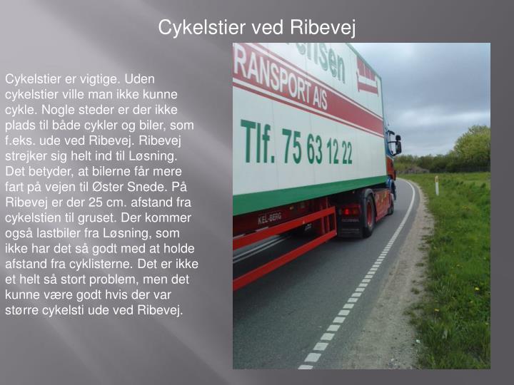 Cykelstier ved Ribevej
