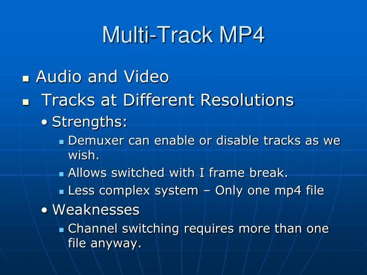 Multi-Track MP4