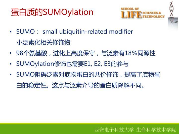蛋白质的SUMOylation