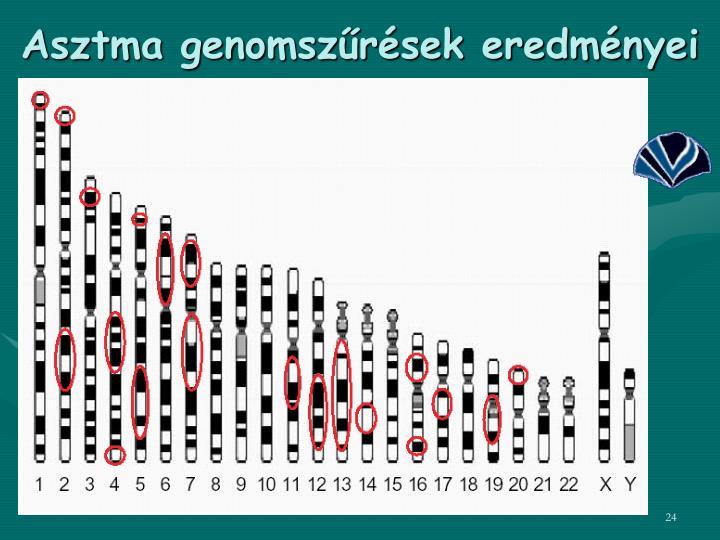 Asztma genomszűrések eredményei