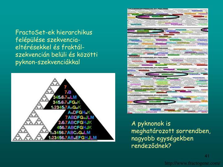 FractoSet-ek hierarchikus felépülése szekvencia-eltérésekkel és fraktál-szekvencián belüli és közötti pyknon-szekvenciákkal