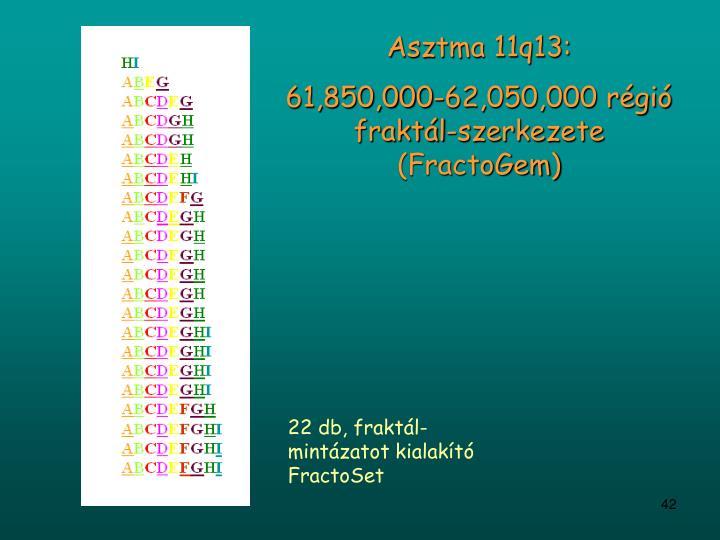 Asztma 11q13: