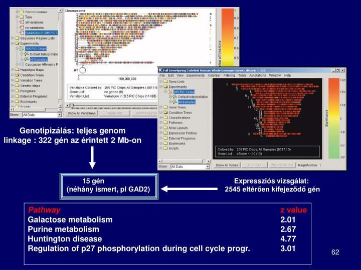 Genotipizálás: teljes genom