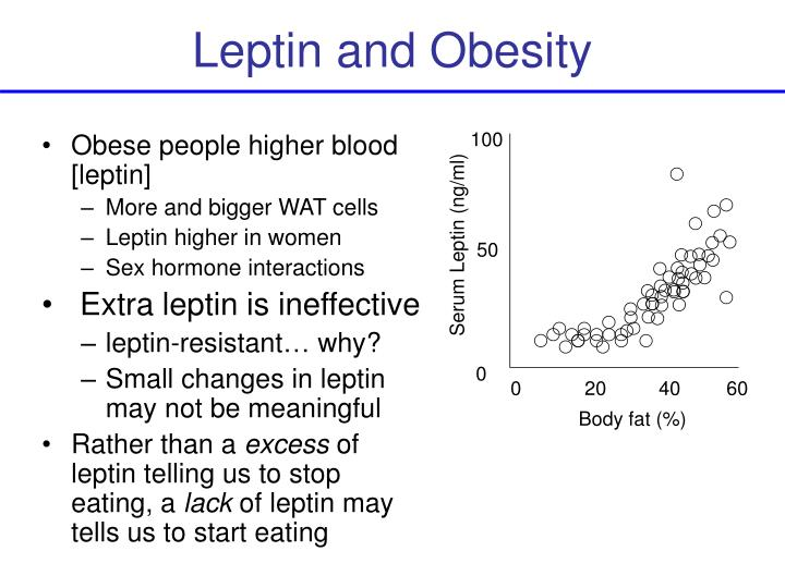 Leptin and Obesity