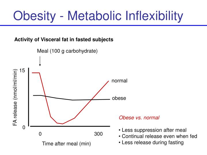 Obesity - Metabolic Inflexibility