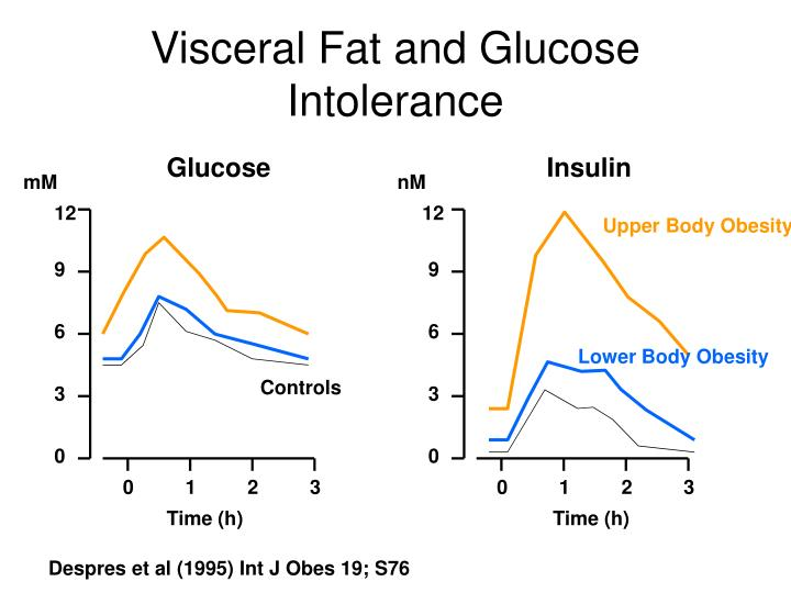 Visceral Fat and Glucose Intolerance