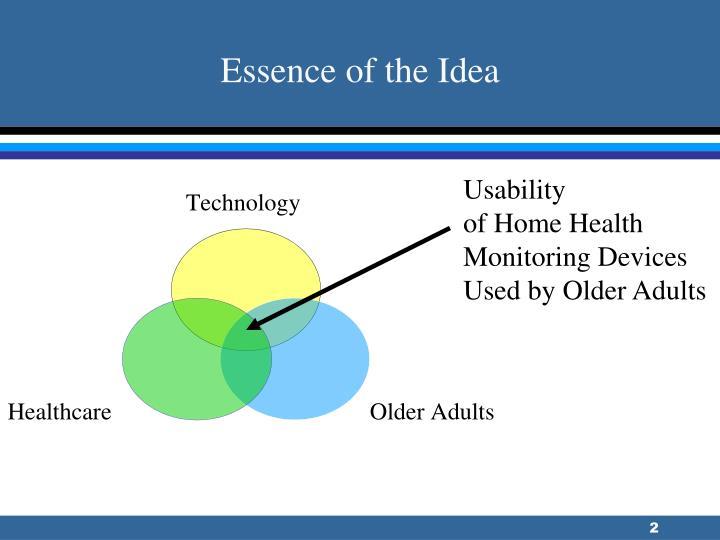 Essence of the Idea