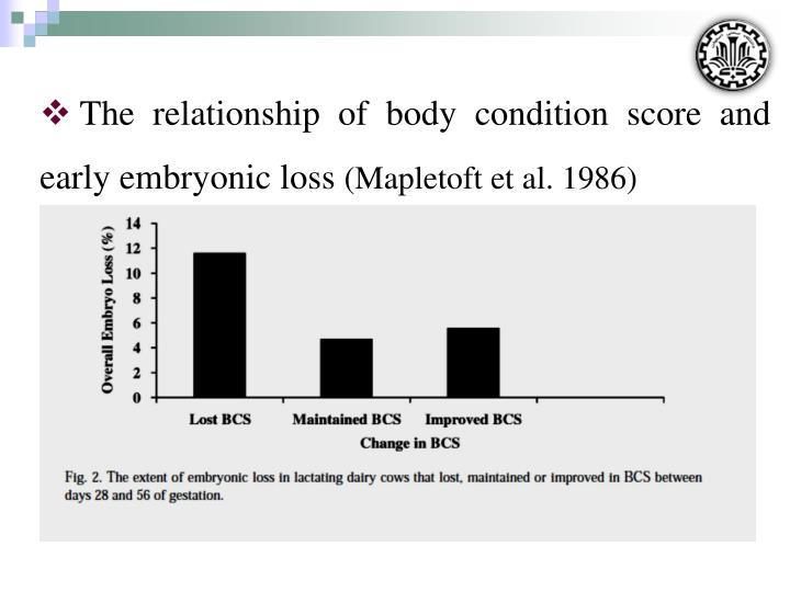 The relationship of body condition score and early embryonic loss