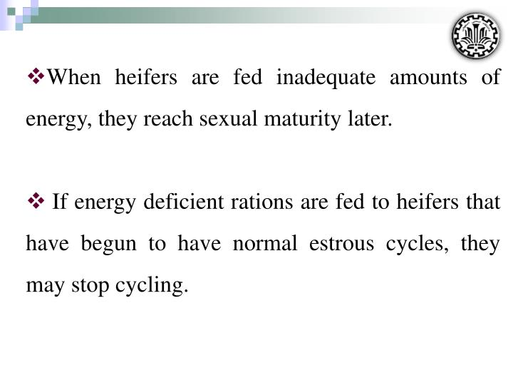 When heifers are fed inadequate amounts of energy, they reach sexual maturity later.