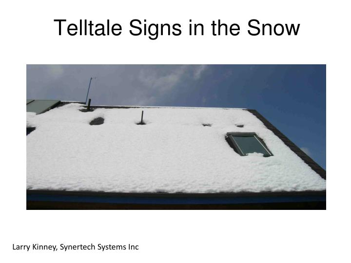 Telltale Signs in the Snow