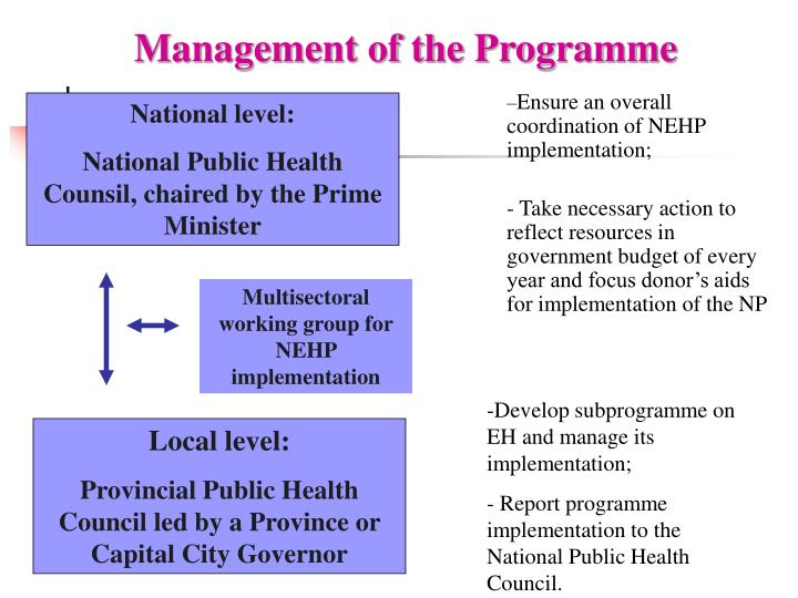 Management of the Programme