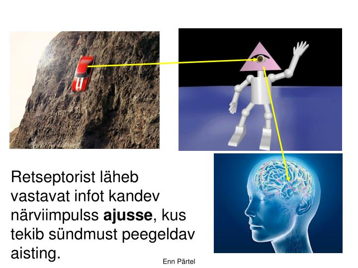 Retseptorist läheb vastavat infot kandev närviimpulss