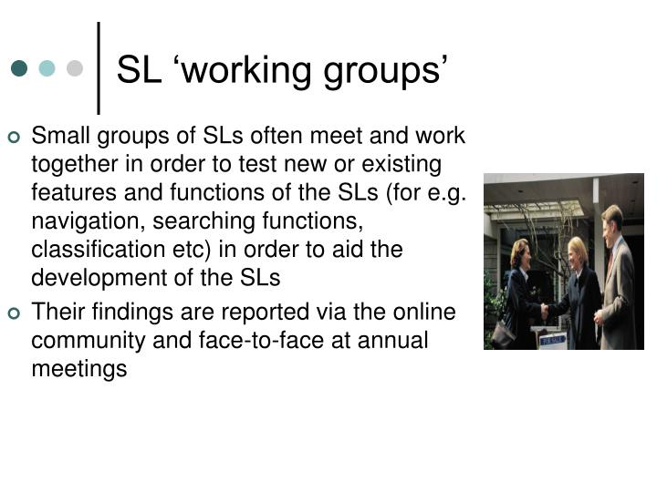 SL 'working groups'