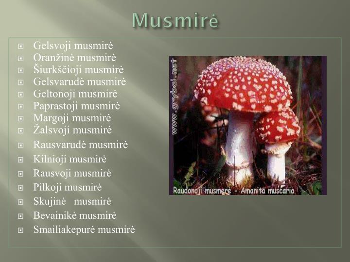 Musmirė