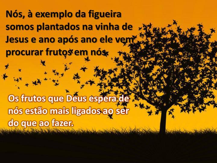 Os frutos que Deus espera de nós estão mais ligados