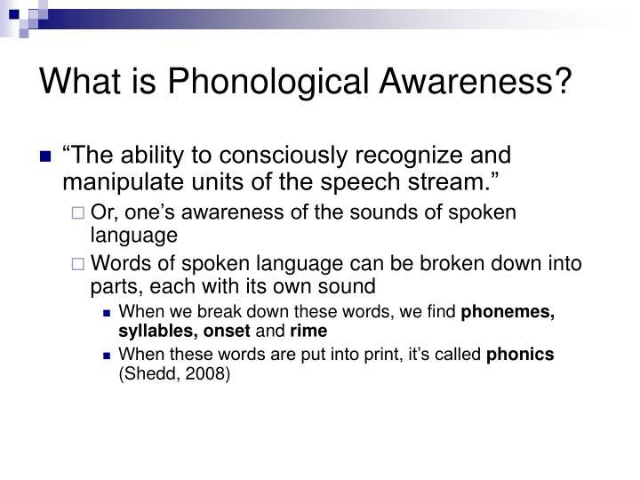 Speechwriting  Public Speaking and Presentation Skills