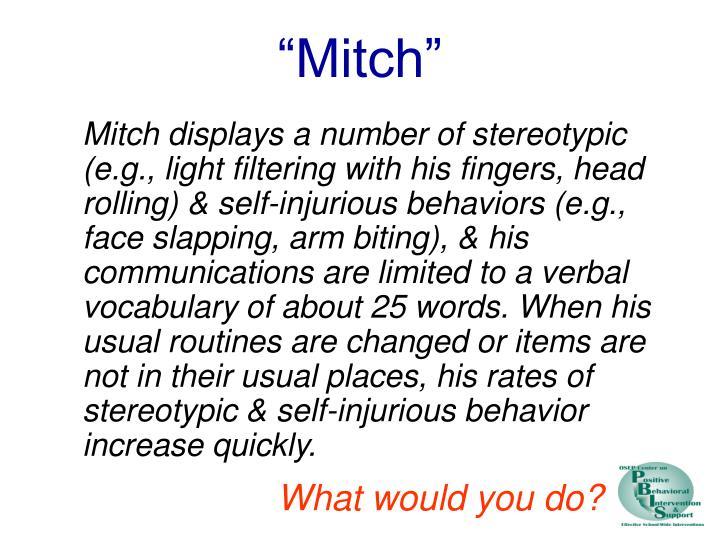 """Mitch"""