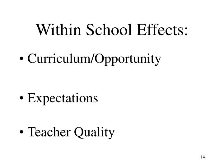 Within School Effects: