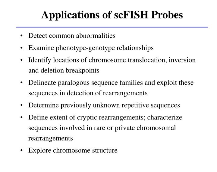 Applications of scFISH Probes
