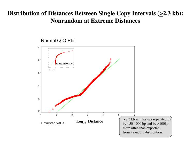 Distribution of Distances Between Single Copy Intervals (
